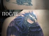 Дракон, cover-up