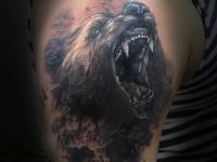Медведь в треш-польке