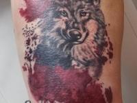 Волк в треш-польке, фрагмент ногава.