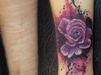 Роза акварель, cover-up